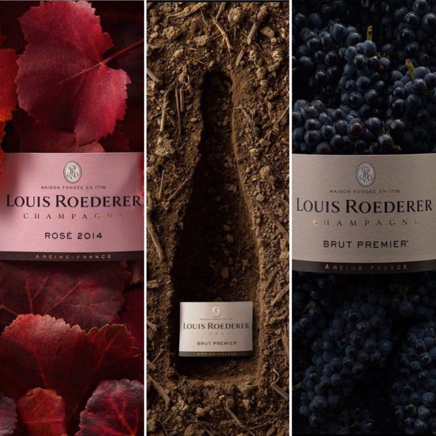 VENDREDI 12 DÉCEMBRE – Dégustation de champagnes Louis Roederer